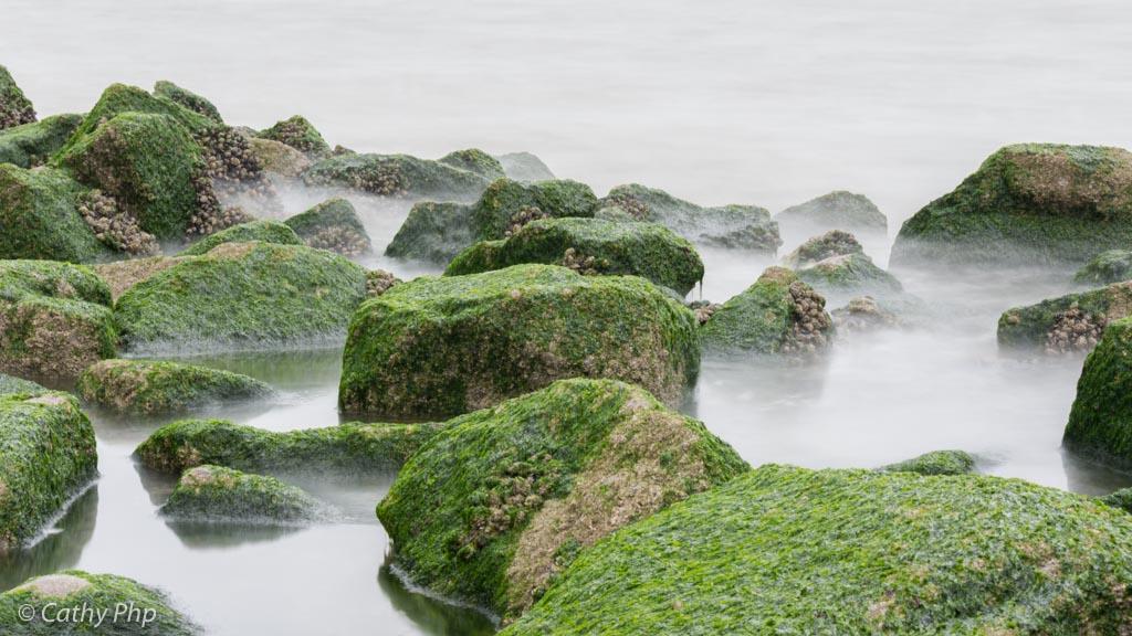 cathyphp de kust